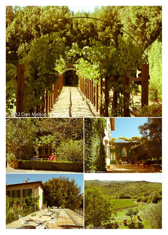 Montecchio Estate, Chianti Classico, Tuscany, 2