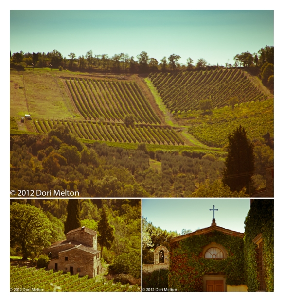 Montecchio Estate, Chianti Classico, Tuscany